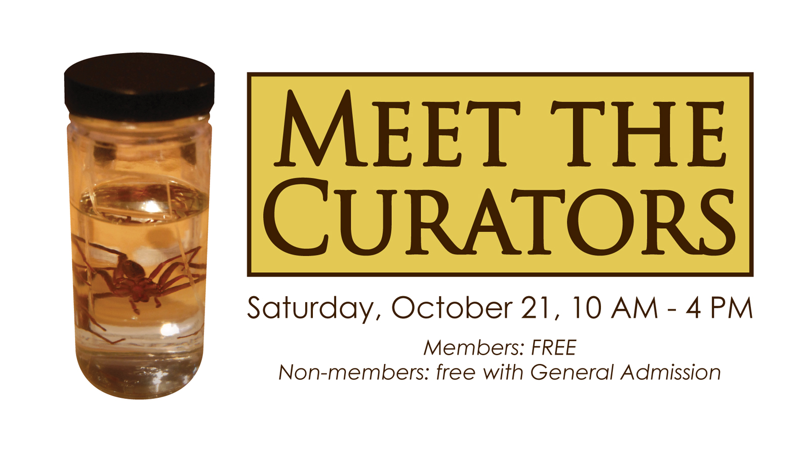 meet the curator museum event