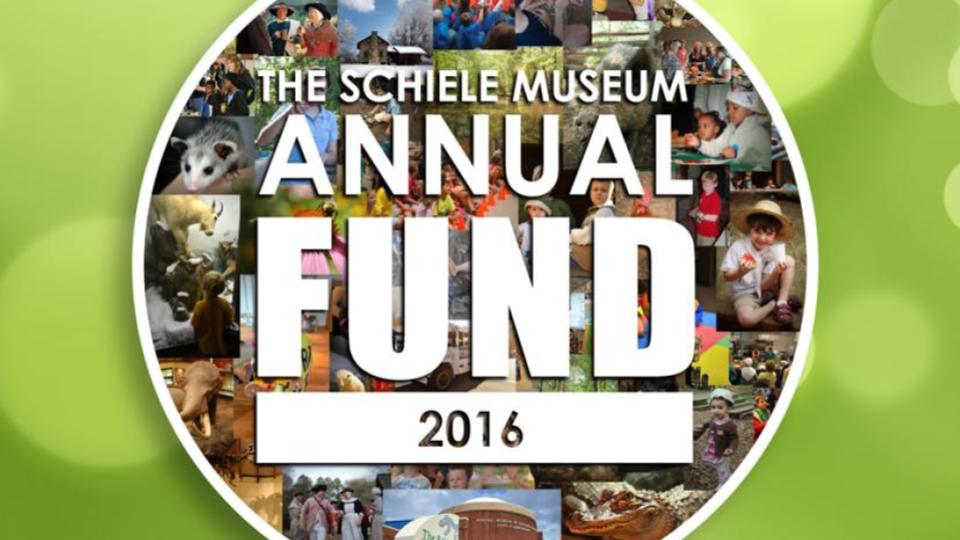 Donate today to support The Schiele Museum as we approach the new year!